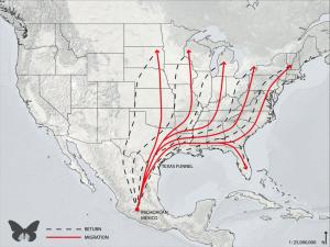 migrationmap-1024x768